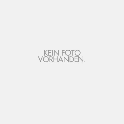 Manfred König - 1. Vorstand